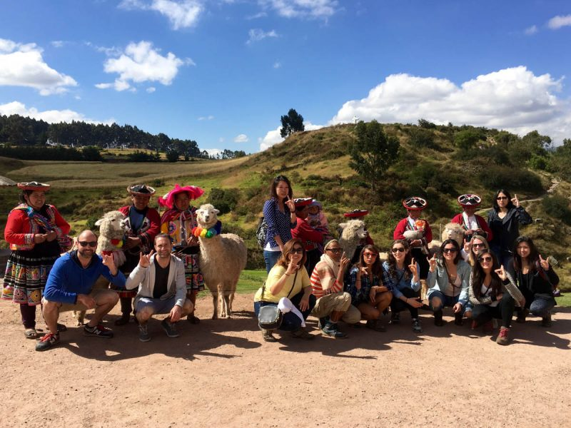 Group shot with llamas and lambs