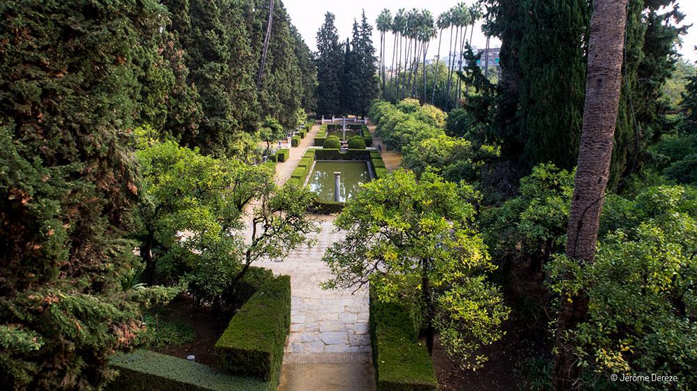 Lieux à visiter à Séville - Jardins de l'Alcazar