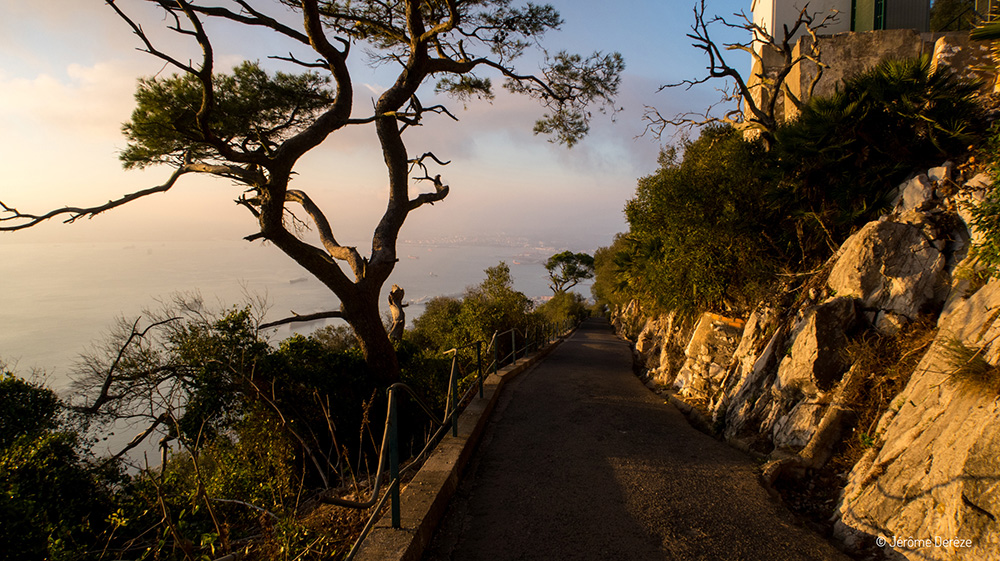 Blogging voyage - Voyager Gibraltar
