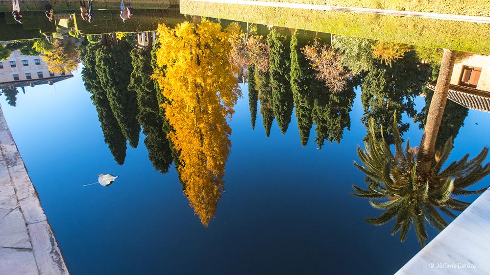 Conseils pratiques pour visiter Alhambra - De nombreux points d'eaux