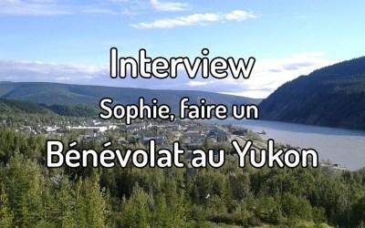 Interview – Sophie, un bénévolat au Yukon