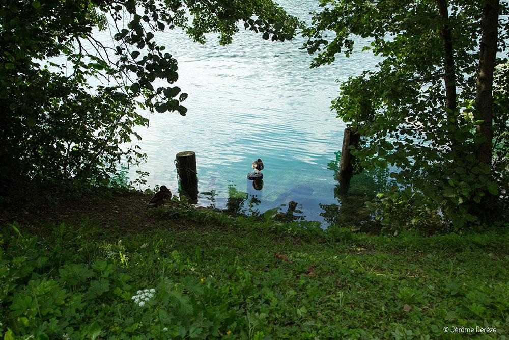Visiter Bled - Marcher autour du lac de Bled
