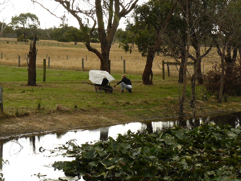 Faire un PVT Australie - WHV Australie - Bénévolat dans un ranch à Melbourne