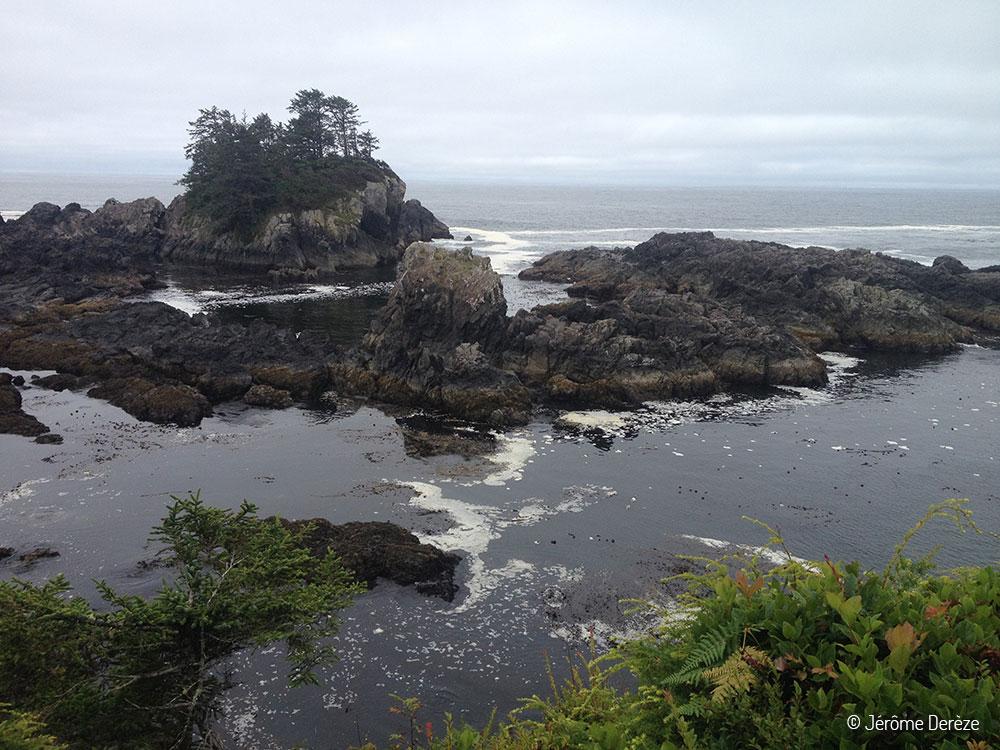 Visiter Île de Vancouver - Randonner sur la Wild Pacific Trail