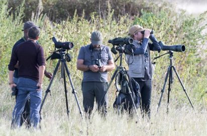 Turismo ornitológico en Galicia, entrevista con Xabier Vázquez