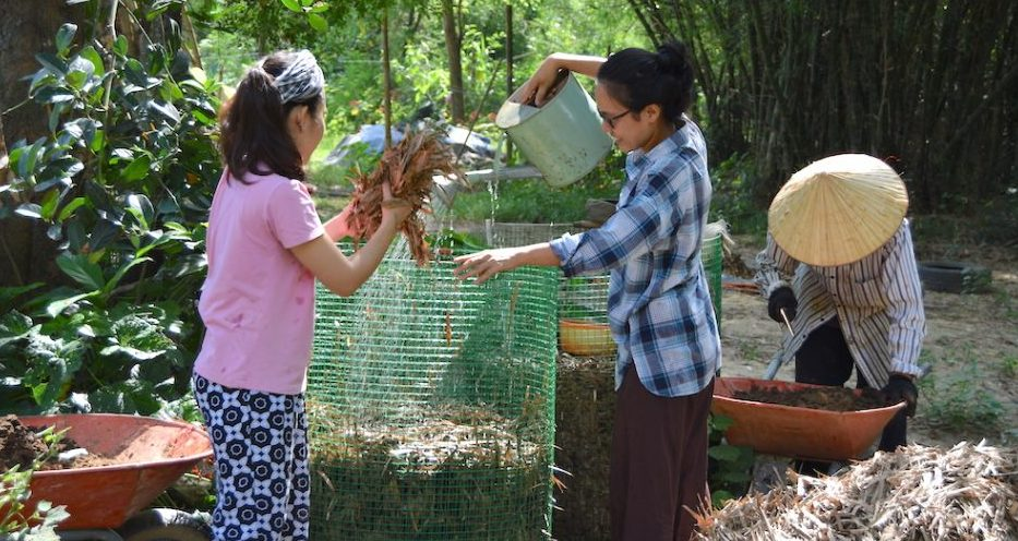 Building social and ecological resilience to face environmental threats: a story from the Triem Tay village