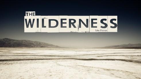 Wilderness Screen