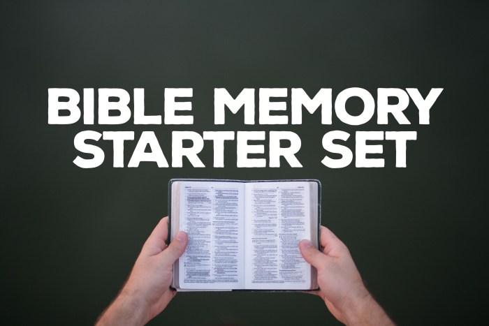 BibleMemoryStarterSet