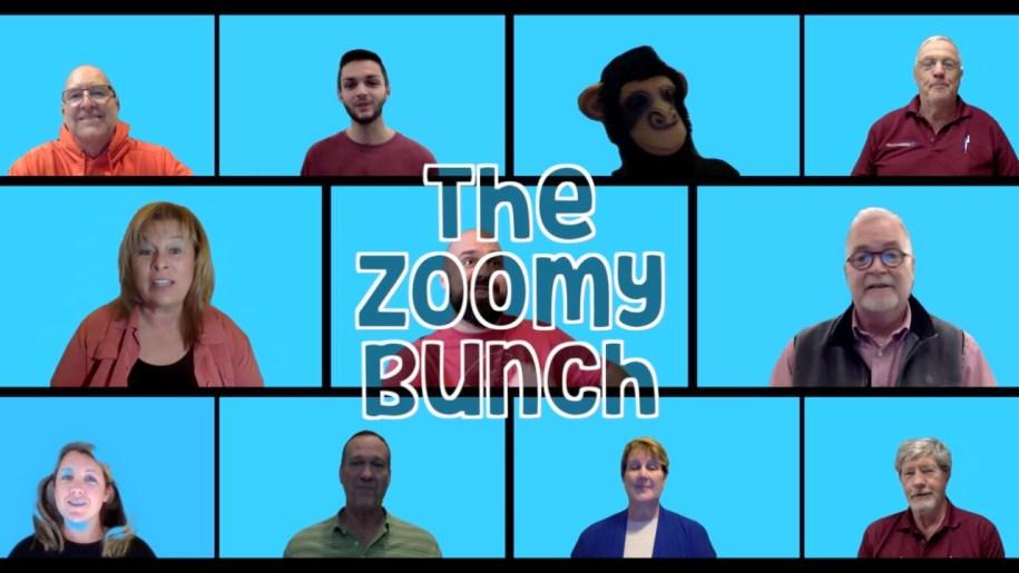 The Zoomy Bunch
