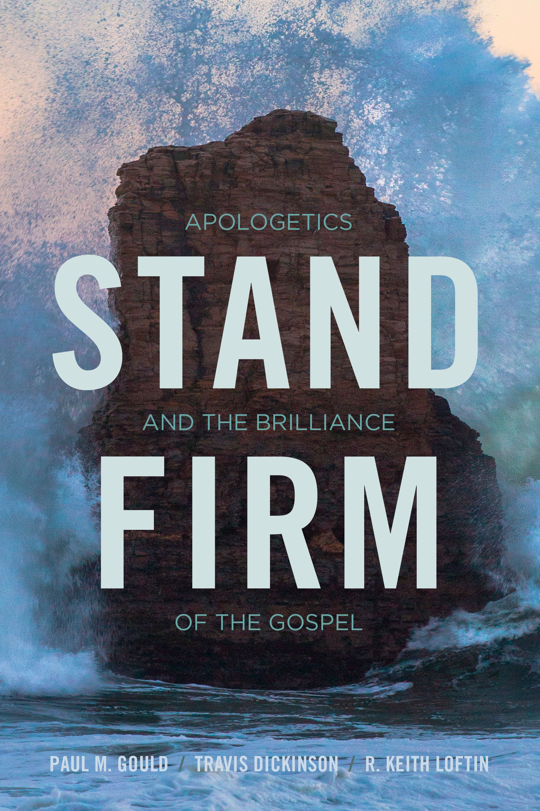 Image result for stand firm book