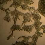 Nicatonic Acid by Light Microscopy