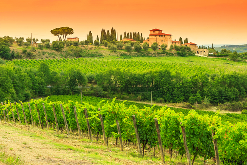 Florence to Chianti Italy Travel Guide Travis Neighbor Ward