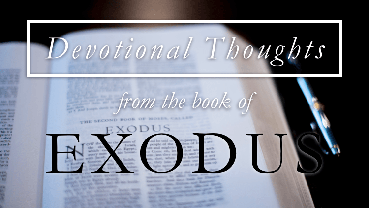 Forged in Affliction (Exodus 1)