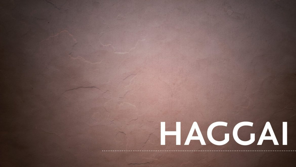 See the Bigger Picture – Haggai 2:20-23