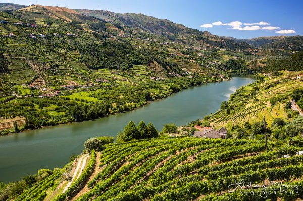 Douro River Valley – Portugal Wine Country Photography ...