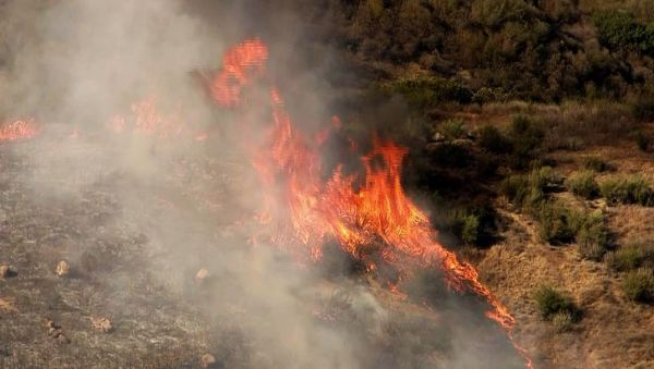 1,000-acre Bogart fire in Riverside County was caused by ...