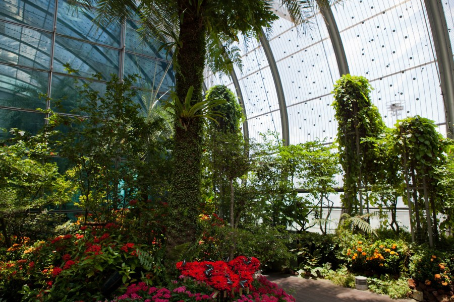 Butterfly garden and golf  9 airports with insane amenities     Butterfly garden and golf  9 airports with insane amenities   Chicago  Tribune