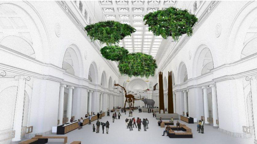 Hanging Plant Clouds Pterosaurs To Join Crowd In Field