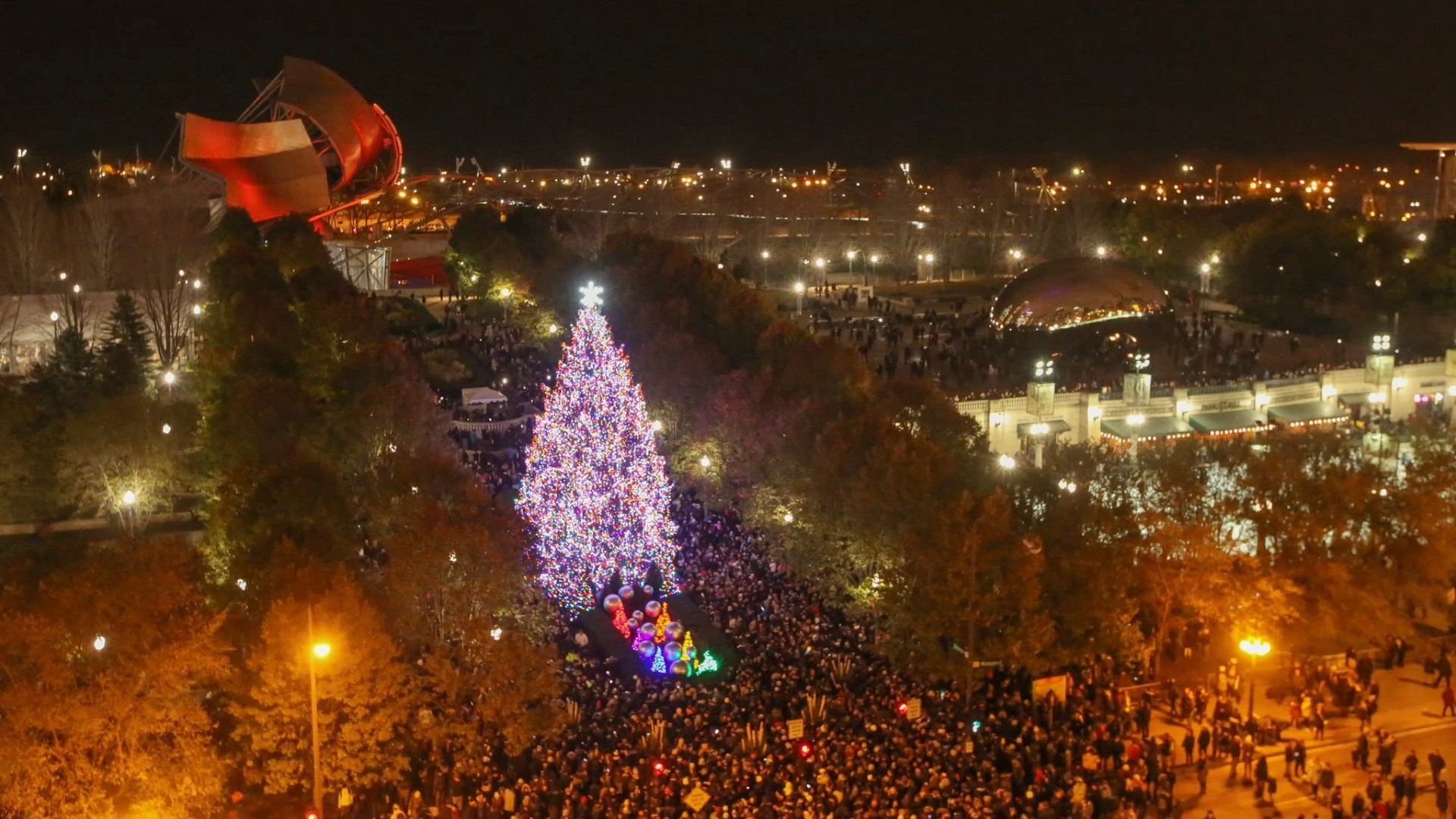 Time Lapse Video Chicagos Christmas Tree Comes To Light