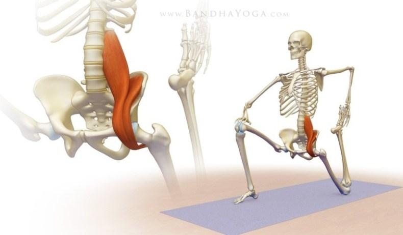 Slika 1. Istezanje mišića m.iliopsoas-a