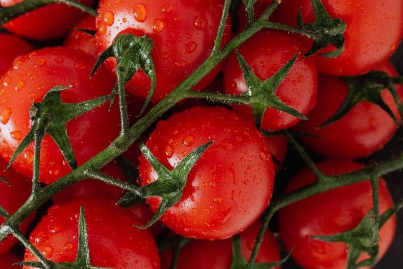 paradajiz sprečava upale mišića posle treninga