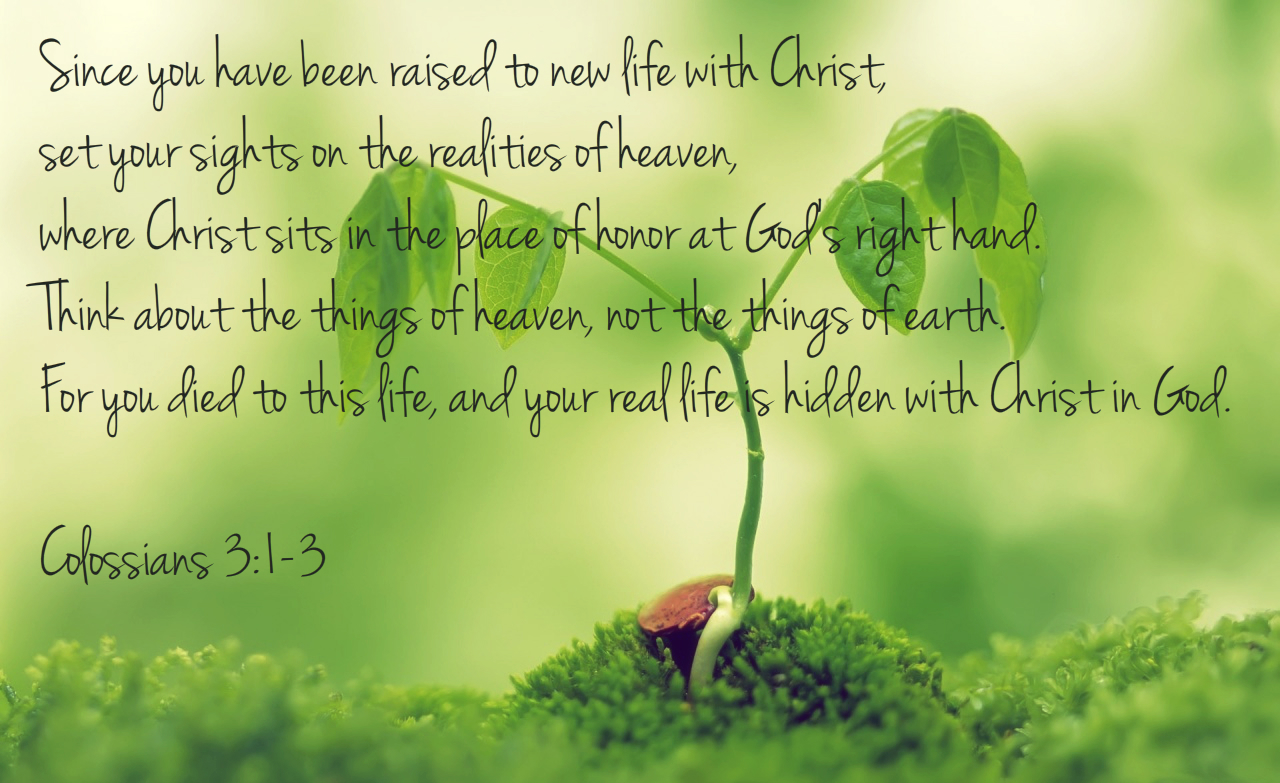Precious Seed Of Heaven Treading Water Til Jesus Comes