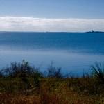 Mosquito Lagoon photo: Cyndi Lenz