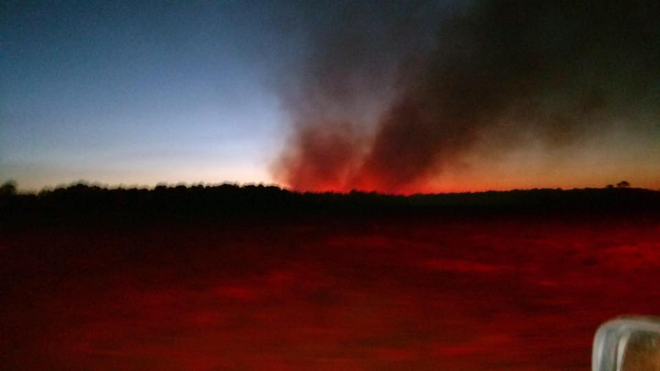 Burn ban issued for Martin County