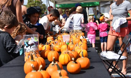 Hobgoblins on Main Street free family festival to take place October 28