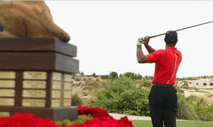 Tiger Woods to play in 2017 Hero World Challenge