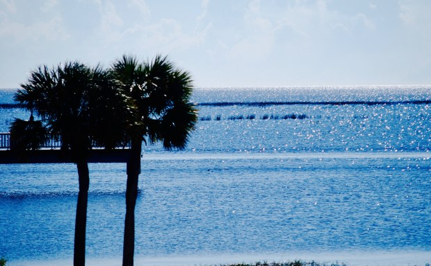 Lake Okeechobee photo: clenz