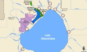 Army Corp public meeting forLake Okeechobee Watershed study August 1, 2018