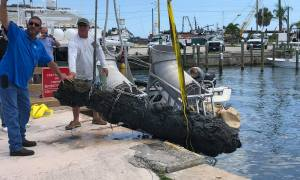 Over 300-year-old cannon found north of Fort Pierce