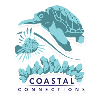 Coastal Connections' Sea Turtle 'Shell'ebration