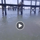 Vero woman sprays fisherman with hose, tells him she owns the water