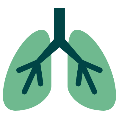 graphic of the lungs