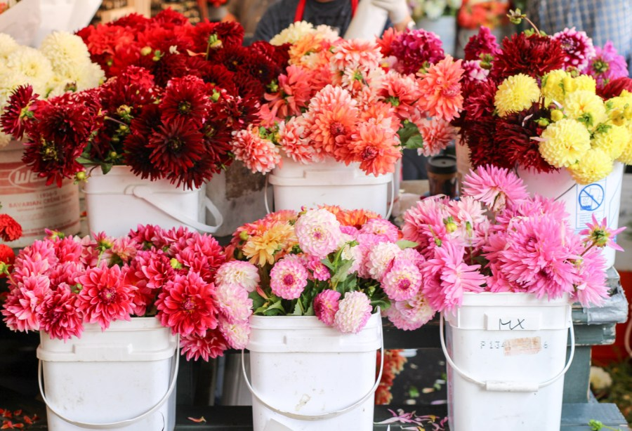 pike-place-market-flowers