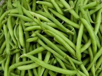 Green Bean Galaxy