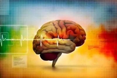 brain by freedigitalphotos.net and ddpavumba