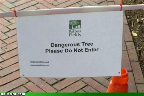 Dangerous Tree. Please do not enter.
