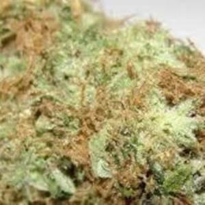 Captain Crunch ( Indica) Dominant (Hybrid) – 70% Indica/ 30% Sativa THC:20%