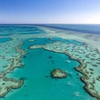 Australia Successfully Lobbies to Keep Great Barrier Reef Off 'In Danger' List; Michael D'Estries; Tree Hugger