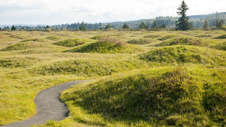 Uncovering the Mysterious Origins of the Mima Mounds