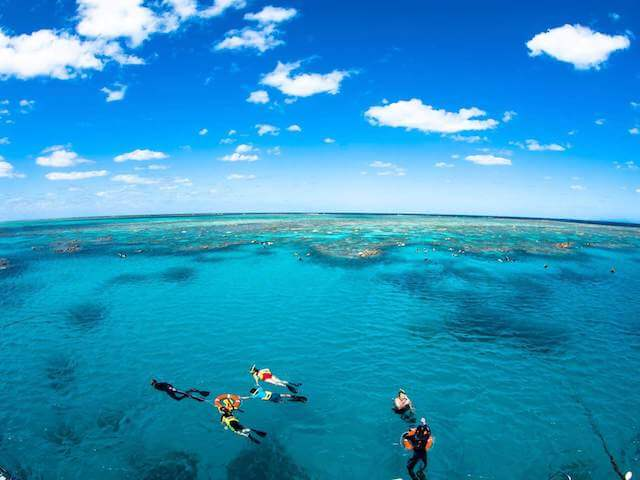 Cairns Eco Reef Cruise