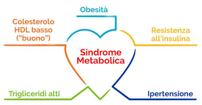 Sindrome Metabolica: come gestirla con Sostanze Naturali Complesse