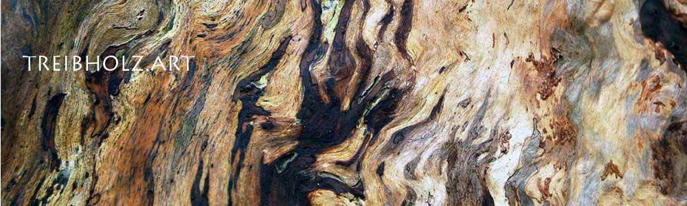Treibholz-Art Banner mit Holz Hintergrung