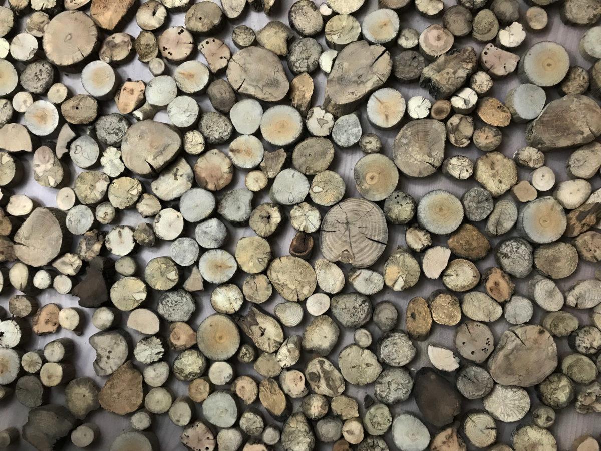 Holzscheiben-Higru