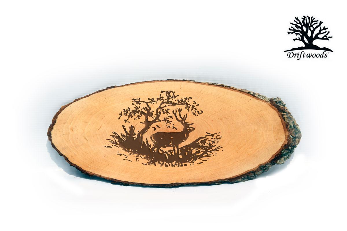 rindenscheibe-hirsch