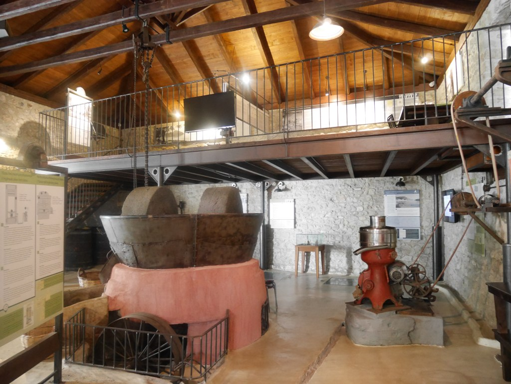 Inside the Paragaea olive oil factory