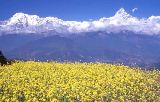 Image result for pokhara valley sightseeing, Places to visit in Pokhara